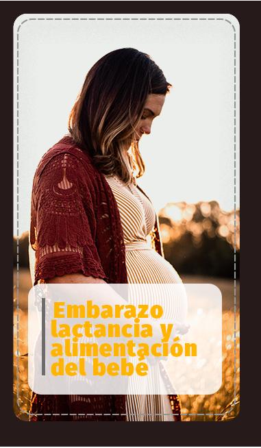 Categoría Embarazo Lactancia y alimentación bebé